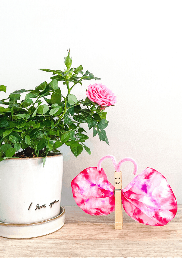 Valentine's Day Butterfly Craft for Kids