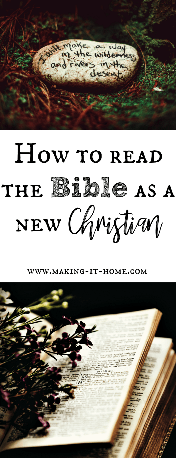 "Are you a new Christian and the idea of reading the Bible intimidates you? Or are you a lifelong believer and although you study the Bible you've never read it all the way through? Learn about one of the best ways to start reading the Bible. A method to help you make sense of all the ""begots"" and many other things that tend to confuse new readers of the Bible. Learn about the beautiful and perfect Word of God."