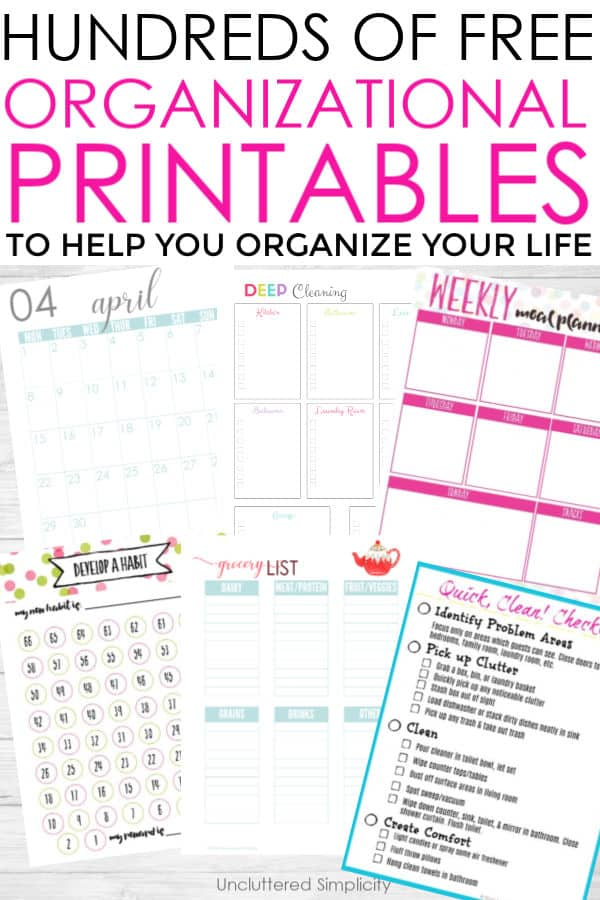 flat lay of home organization printables
