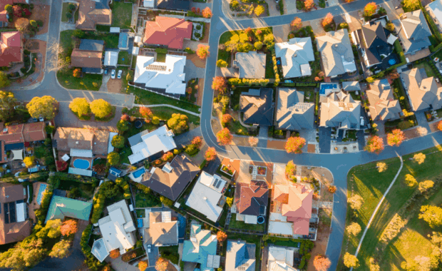 aerial view of neighborhood full of trees to demonstrate difficulty with trees on shared property lines