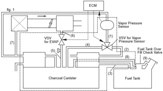 1999 Lexus ES300 Evap system diagram