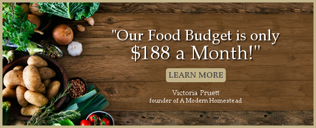 Graphic with text our food budget is only $188 a month learn more