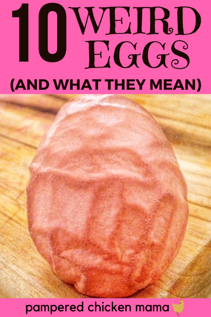 Got weird looking, wrinkled, or abnormal backyard chicken eggs? Here's what your hens are trying to tell you!