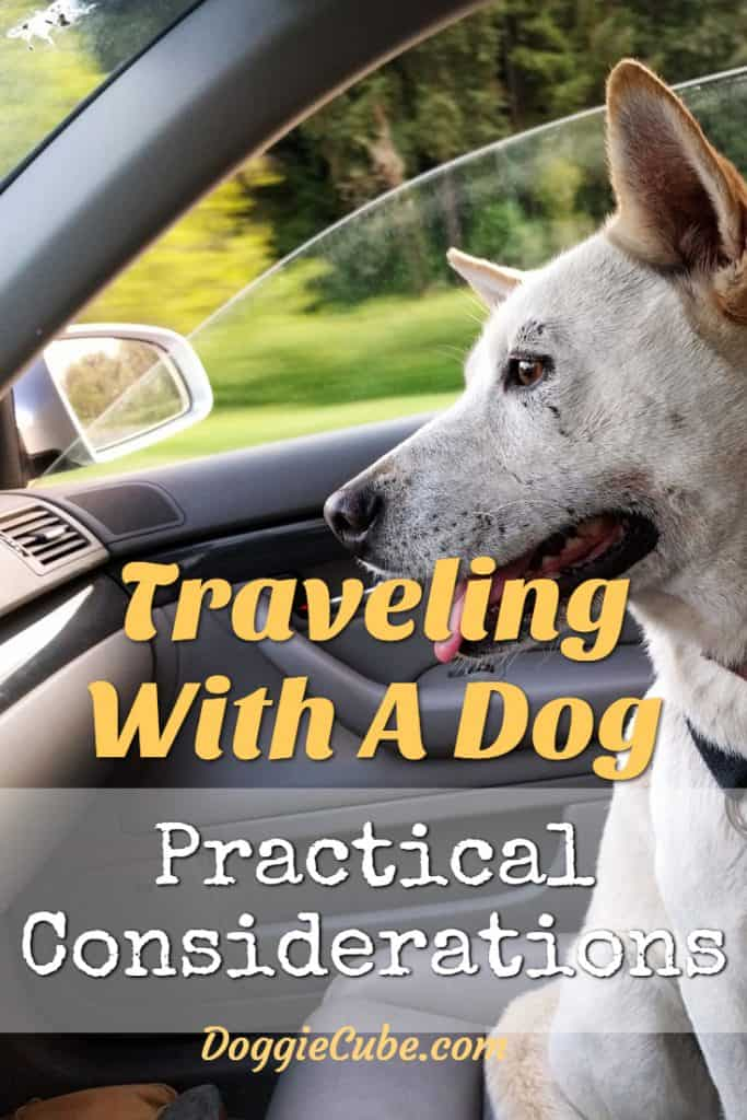 Traveling with a dog can be a smooth, stress free experience. Be it road trips in cars, camping trips or traveling in an airplane, we would love to bring our best friends along with us on our vacations with our families. Here are some practical tips to help you know what to expect so as to avoid potential pitfalls. #dogtravel #travelingwithadog
