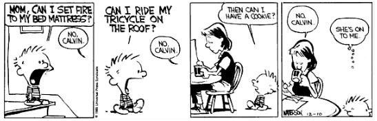 Calvin & Hobbes 3