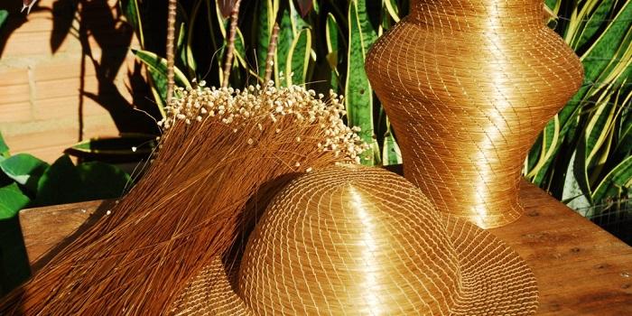 Jalapão - Capim Dourado