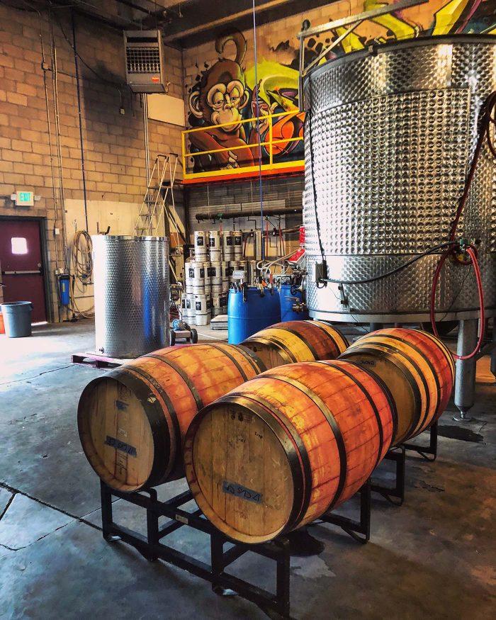Infinite Monkey Theorem Wine Tour Denver   Blue Mountain Belle