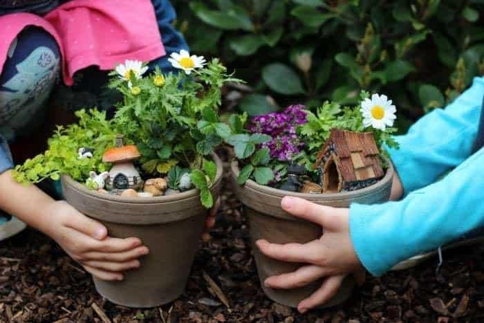 Mini Flower Gardens