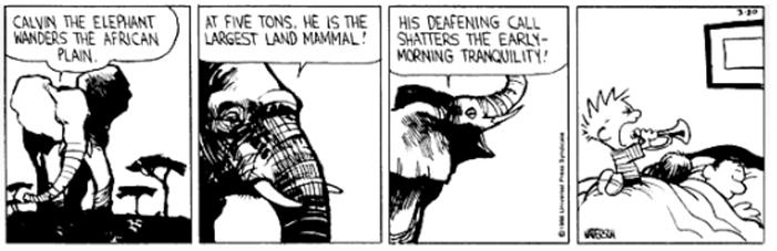 Calvin & Hobbes 1