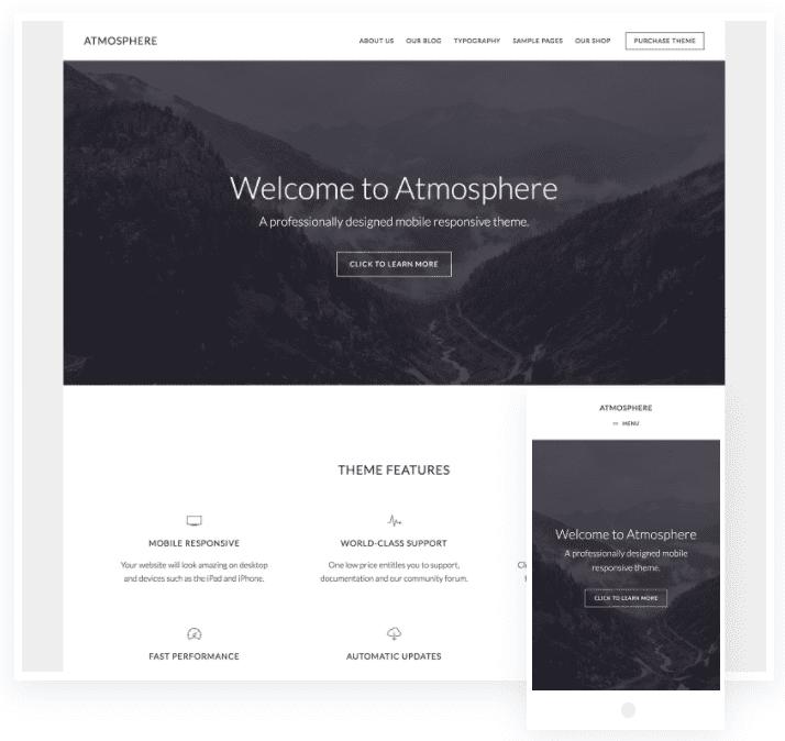 wordpress theme ecommerce responsive
