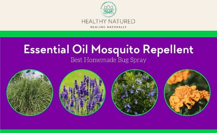 Essential Oil Mosquito Repellent Best Homemade Bug Spray