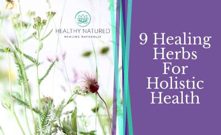 9 Healing Herbs For Holistic Health