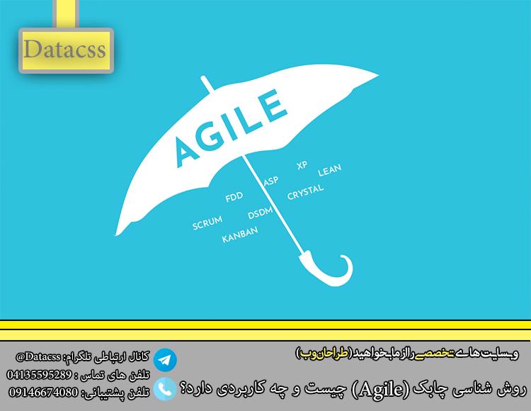 datacss 2 Recovered.pnglkj - روش شناسی چابک (Agile) چیست و چه کاربردی دارد؟