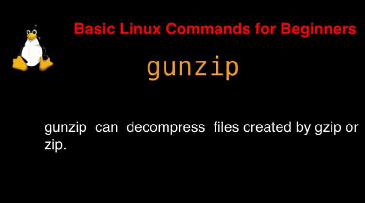 gunzip command in Linux with Examples - DevopsRoles com