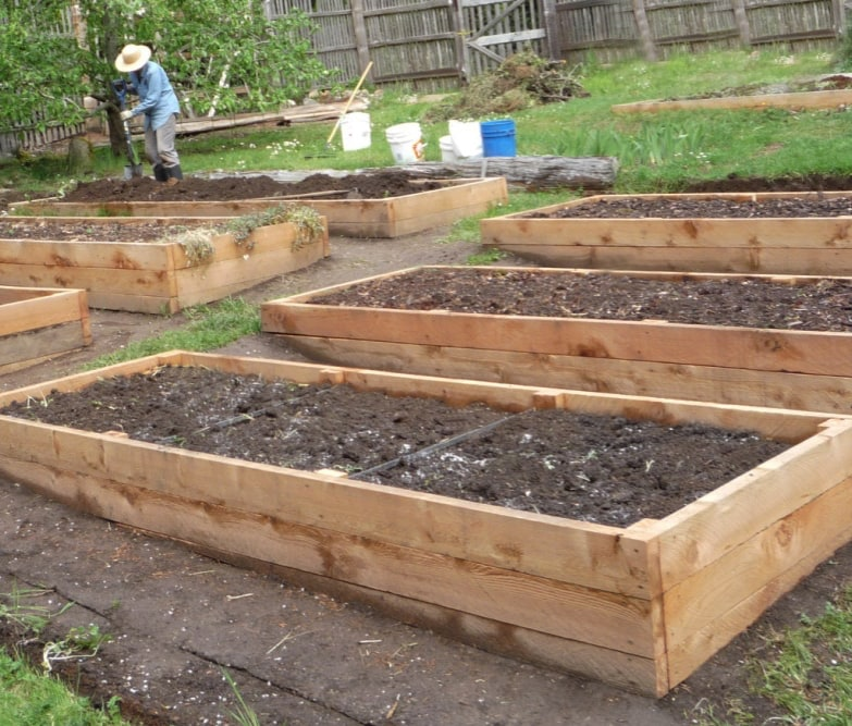 Raised Beds Preparing Your Garden For Spring