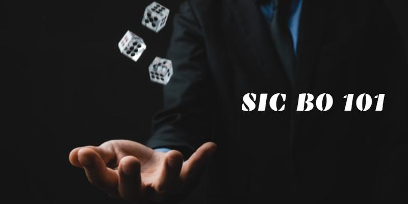Sic Bo Guide