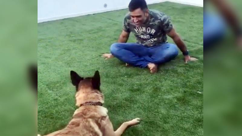 Dhoni Playing with Dog