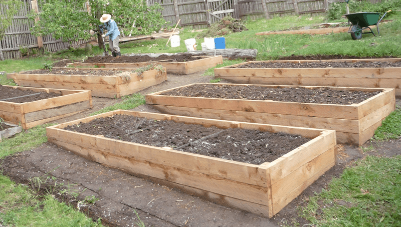 preparing the soil in raised garden beds