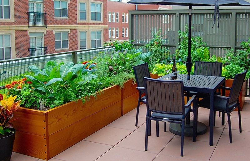 L shaped rooftop raised garden