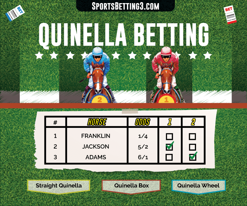 Quinella Betting Explained