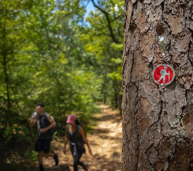Hiking and Biking Code of Conduct