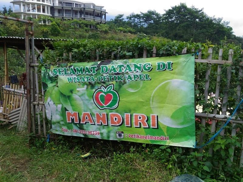 Tempat wisata kebun apel Malang yang patut dicoba