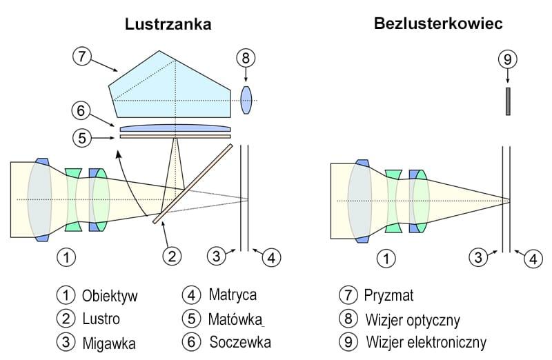 Wykres przedstawiający różnice w budowie lustrzanki oraz bezlusterkowca.