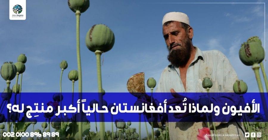 الأفيون ولماذا تُعد أفغانستان حالياً أكبر منتِج له؟
