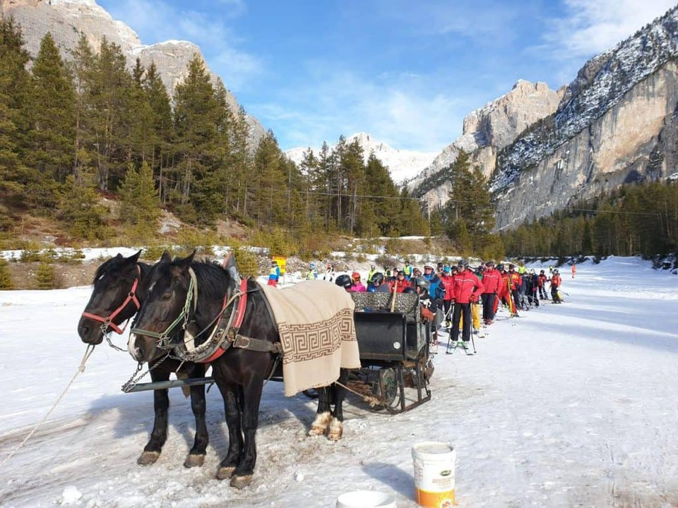 sled with horse to go back to armertarola