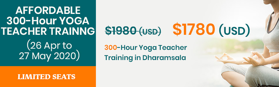 300 hr yoga training dharamsala2020