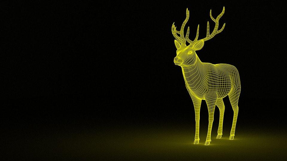 Wizualizacje 3D