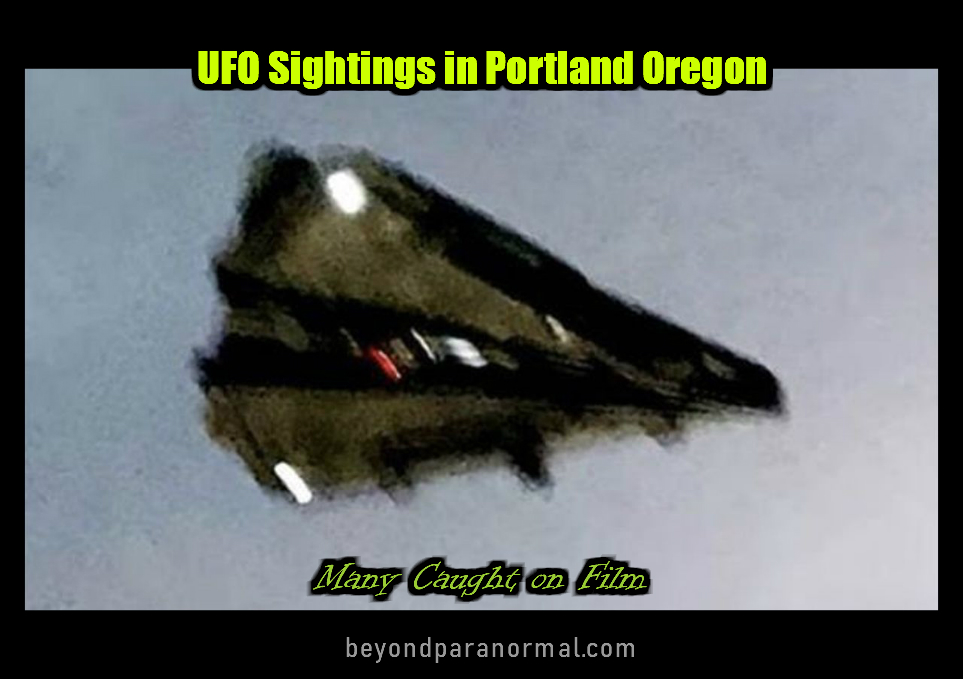 an image of UFO%20Sightings Beyond Paranormal