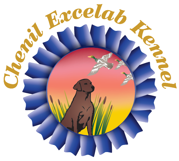 Chenil Excelab Kennel