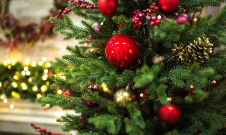 8 Christmas Cleaning Tips to Take Your House From Hot Mess to Ready for Guests