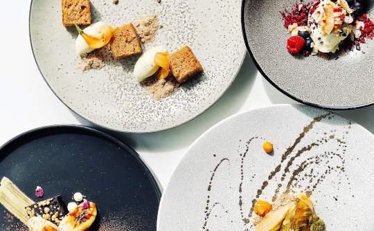 Gourmet dining plates