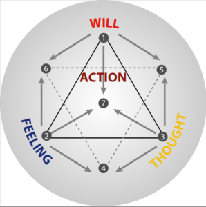 The Psychological Function of Action