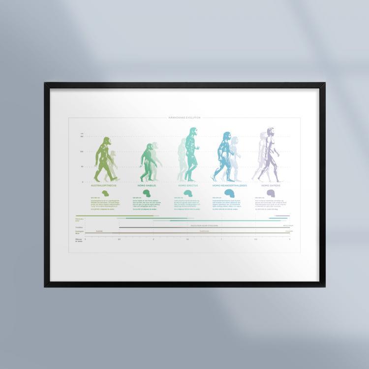 Poster-Tavla-Manniskans-Utveckling-Evolution-Ram-Kunskapat
