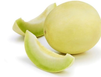 Can Dogs Eat Honeydew? Should I Give it to my Dog?