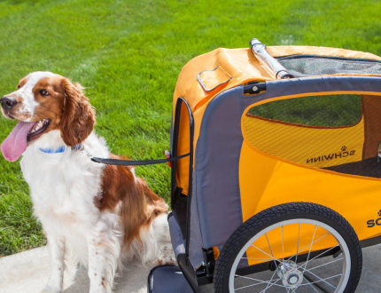 The 13 Best Dog Bike Trailers