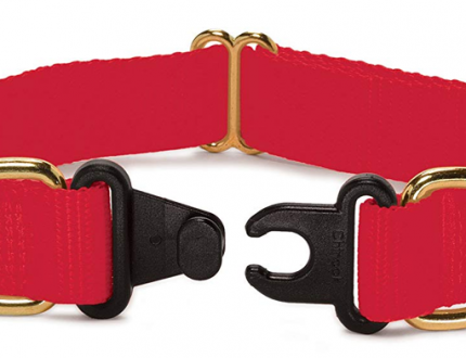 The 6 Best Break Away Collars for Dogs