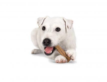 Milk Bone Brushing Chews Review