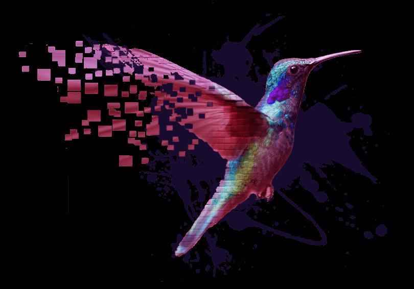 pixelium_bird_design