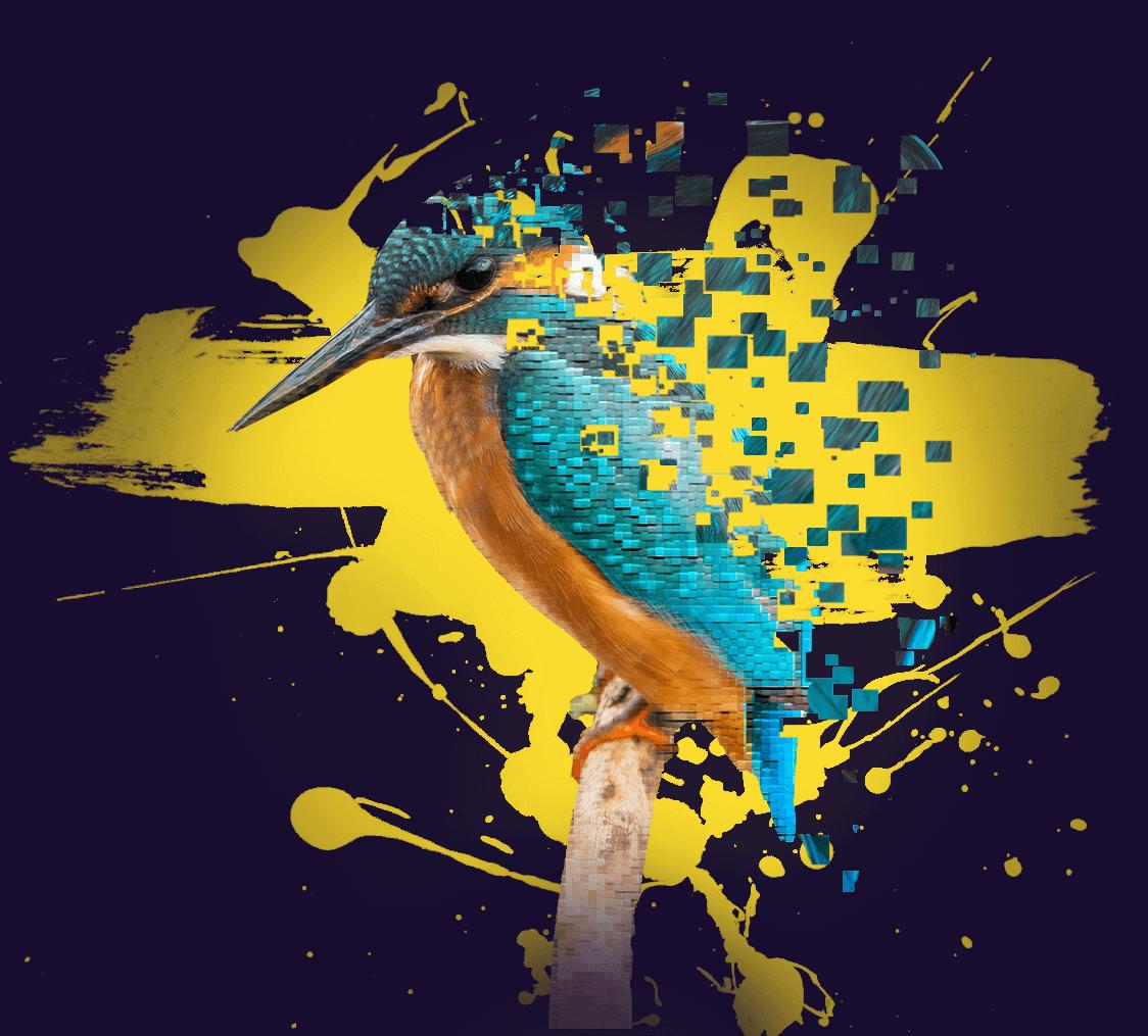 pixelium_madar_design