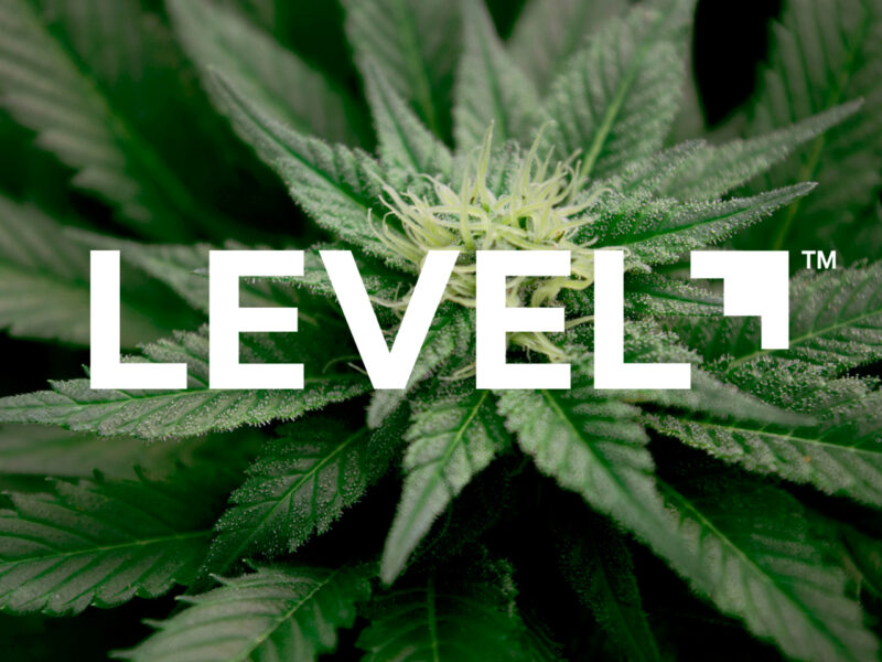 Level Experience Cannabis