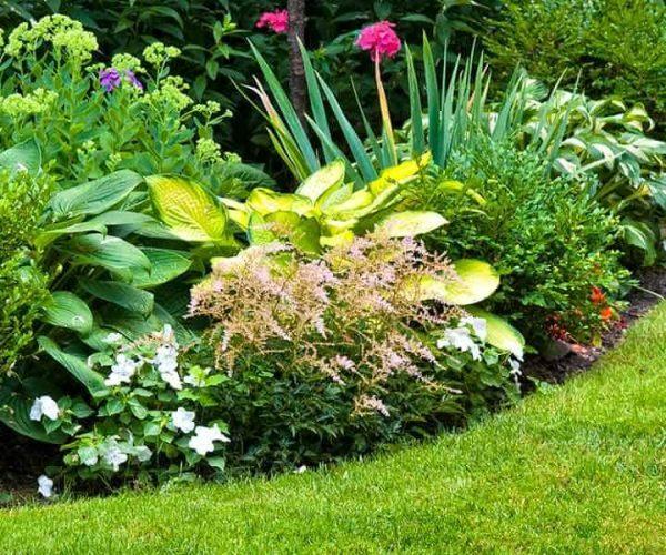 The Garden Fixer | Garden Care Services