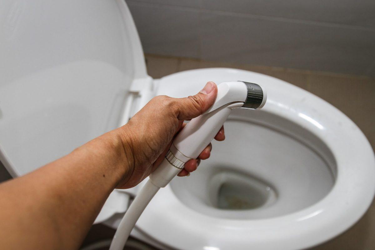 hand held spray for bidet-toilet paper alternatives