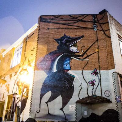 Wolf Lane Perth