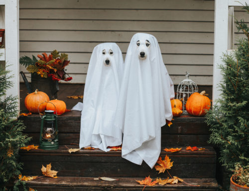Tricks for Treating: Eating Disorder Recovery Tips for Halloween