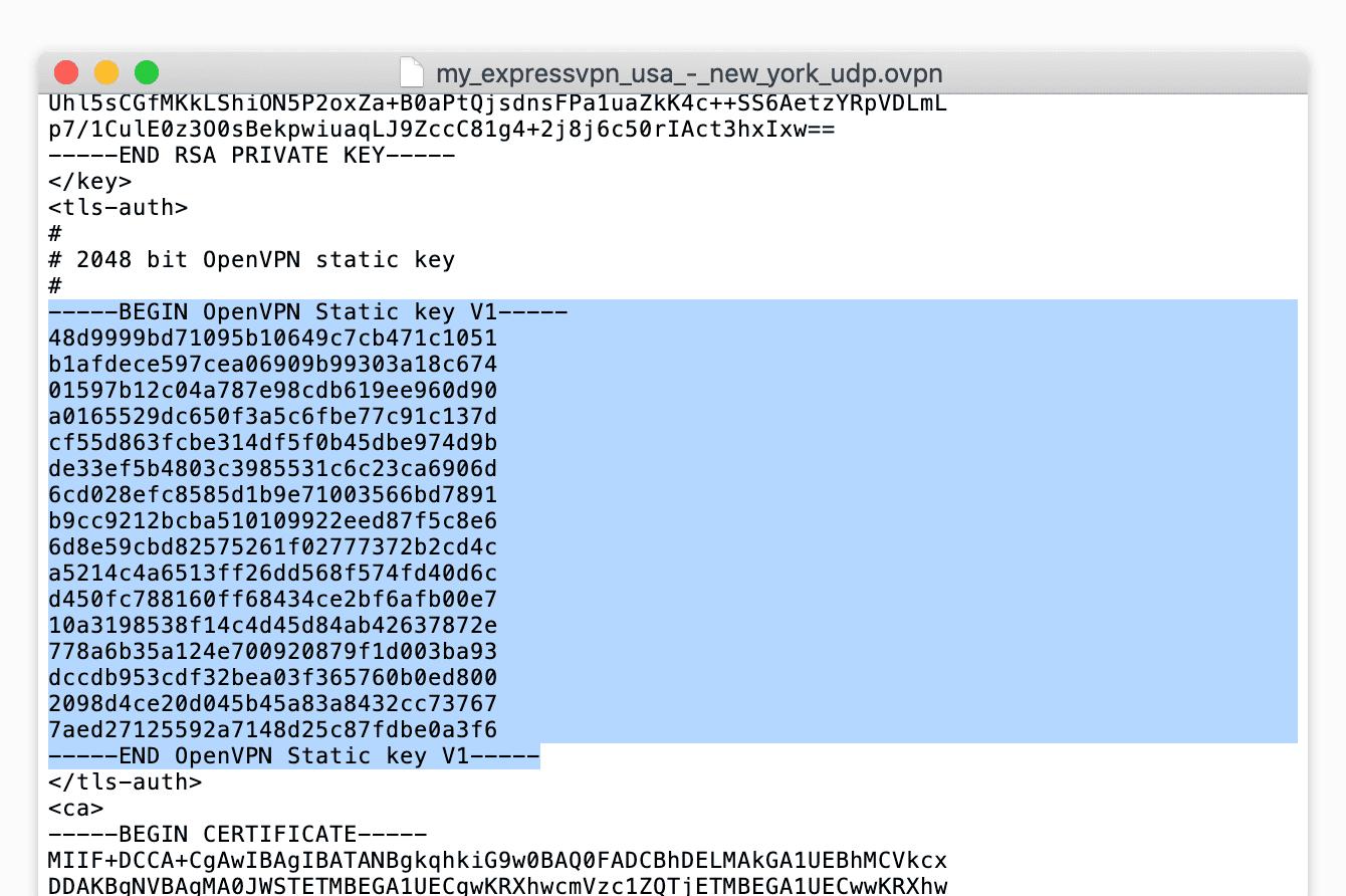 Entrez le texte dans le champ TLS Auth Key