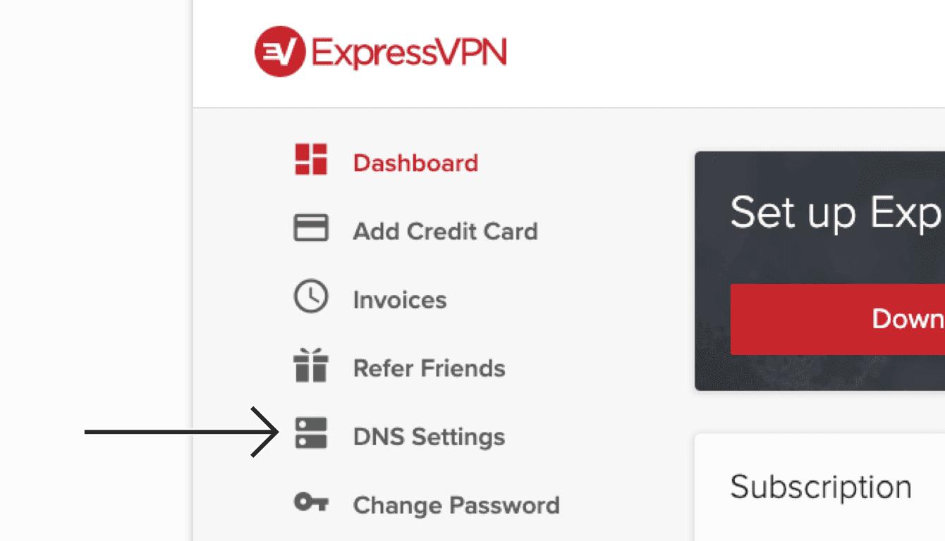 """Select """"DNS Settings."""""""